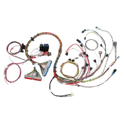 street machinery ls click start harness efi wiring harness for gm rh info brandonbroadwater info  gm tbi engine efi wiring harness